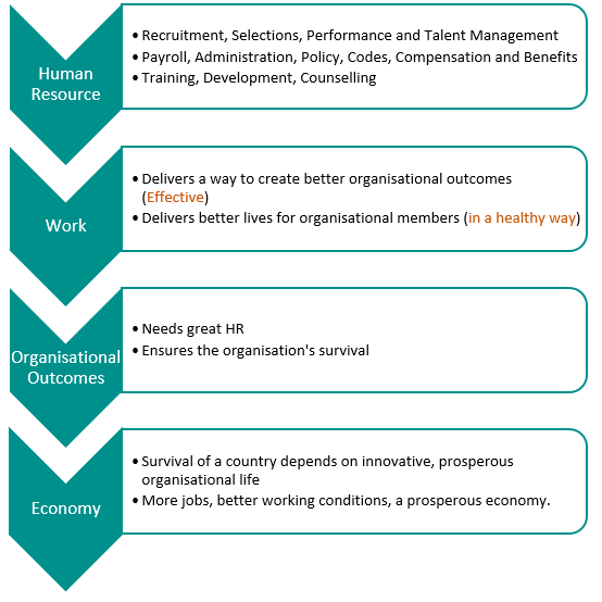 HR Practices and Innovation: Understanding the Key Pieces in South Africa's Domino Effect
